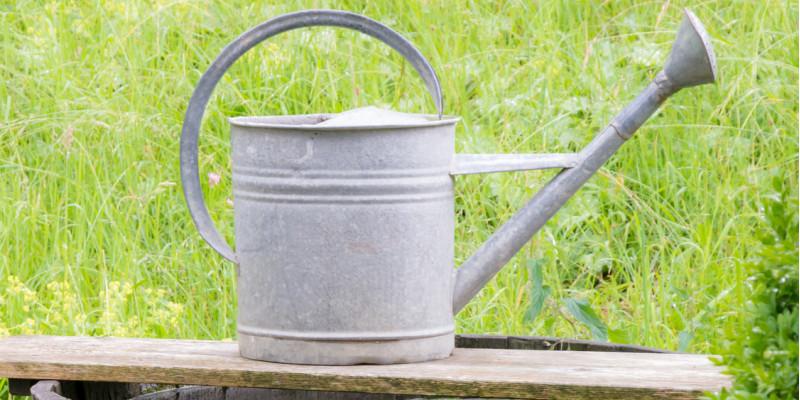 Etwas Neues genug Regenwassernutzung | Umweltbundesamt &QR_56