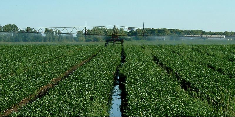 Wasserwiederverwendung mit möglichen Risiken für die Umwelt und die menschliche Gesundheit einher