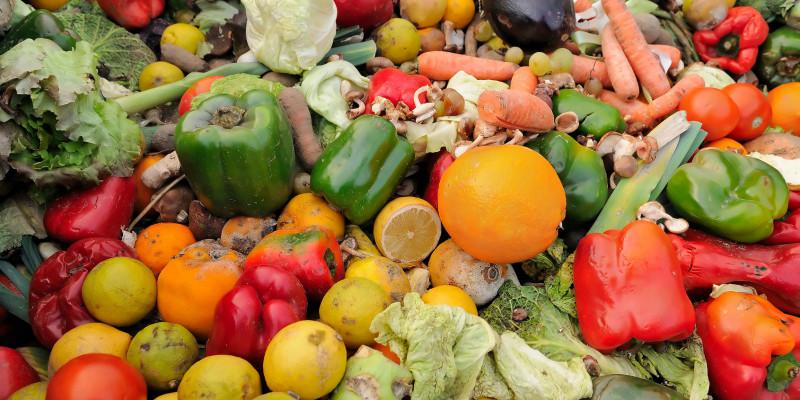 Weggeworfenes Obst und Gemüse