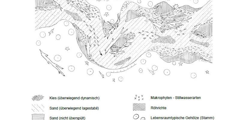 Skizze des Habitats des sandigen Tieflandbachs
