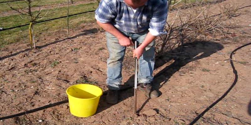 Anwendungsfoto Bohrstock für Bodenuntersuchung