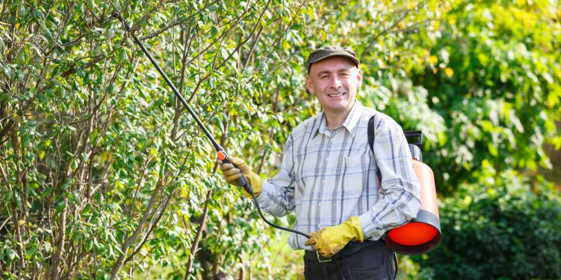Hobbygärtner bei der Ausbringung von Pflanzenschutzmitteln