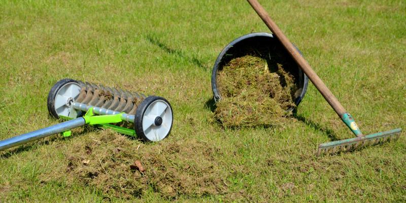 Ein Vertikutierer, ein Rechen und ein Eimer auf einem Rasen platziert