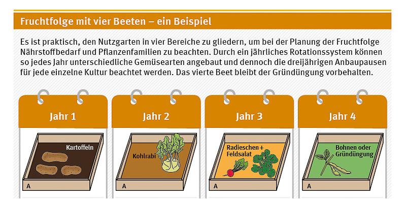 Fruchtfolge mit vier exemplarischen Beeten