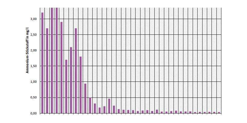Jahresdurchschnittskonzentration von Ammonium-Stickstoff an Messstelle Schnackenburg an der Elbe