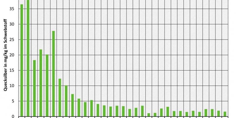 Balkendiakgramm über die Schwebstoffkonzentrationen an der Elbe
