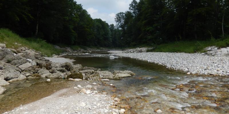 Bild von einem Fluss in Deutschland