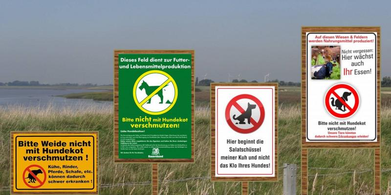 Vier verschiedene Hinweisschilder vor einer Weide, welche Hundebesitzer (teils humorvoll) über das Risikopotential von Hundekot auf Weiden hinweisen