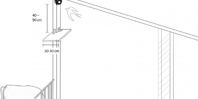 Die Grafik zeigt ein fressendes Rind. Über der Futterstelle befindet sich ein Schwalbennest. Darunter ist ein Brett angebracht, welches den Kot auffängt, damit er nicht ins Futter gelangt.