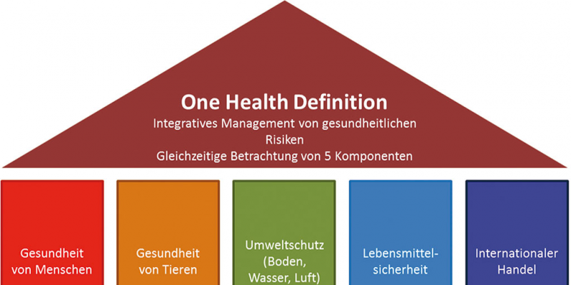 One health integratives management von gesundheitsrisiken for Definition von boden