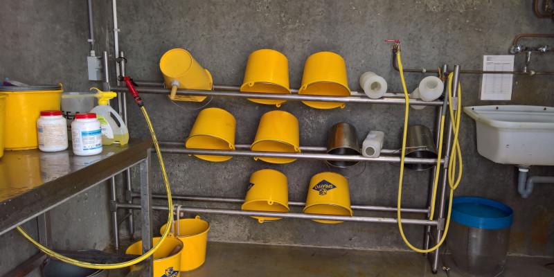Das Bild zeigt mehrere Tränkeimer, die in einem Raum mit gekacheltem Boden und Waschbecken in einem Regal aufbewahrt werden.