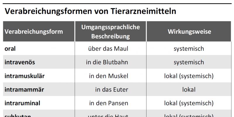 Tabelle listet Verabreichungsformen, deren umgangssprachliche Beschreibung und Wirkungsweise auf.