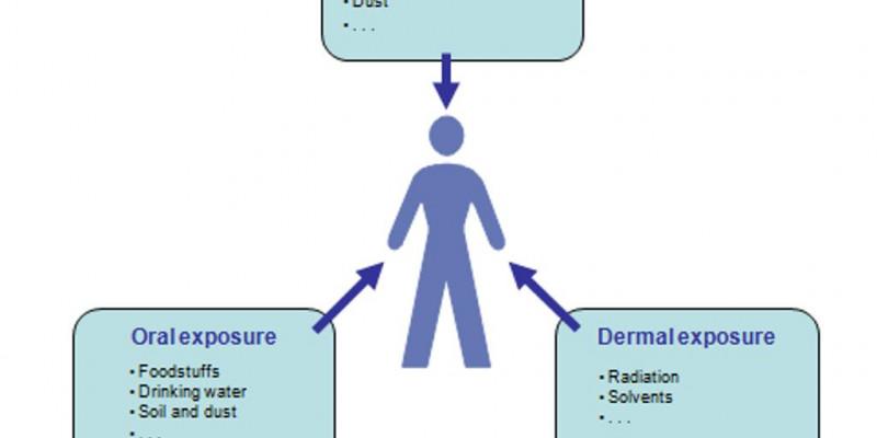 diagram presenting oral, dermal and inhalativ exposure to man