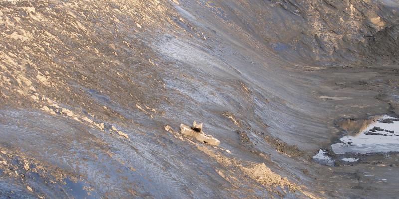 Bank of a tar basin
