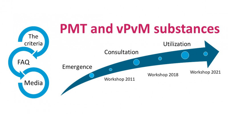 PMT and vPvM substances under REACH