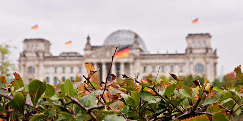 the Reichstags dome behind plants