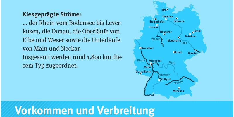 Karte die das Vorkommen in Deutschland von kiesgerägten Ströme aufzeigt.