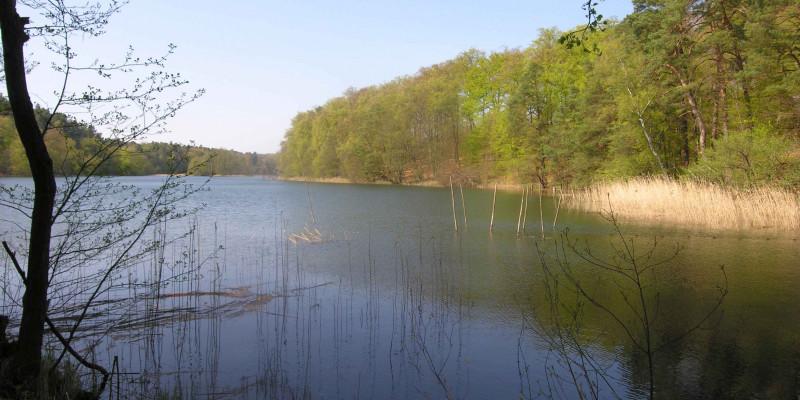 Blick auf den Nehmitzsee in Brandenburg