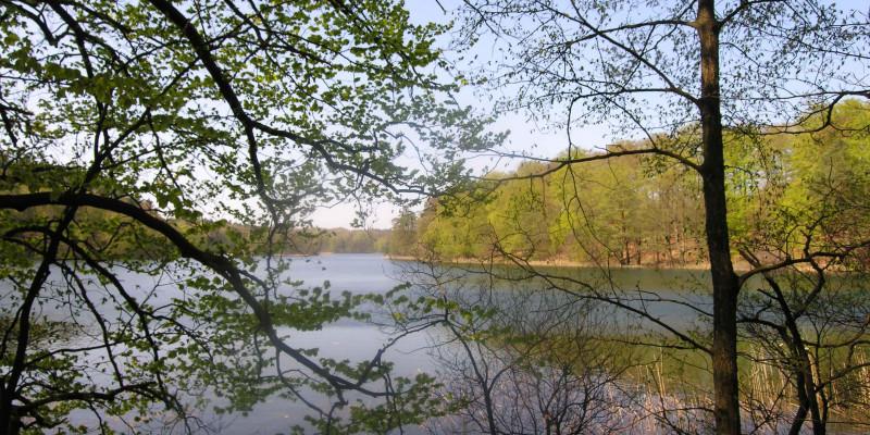 Der Nehmitzsee in Brandenburg