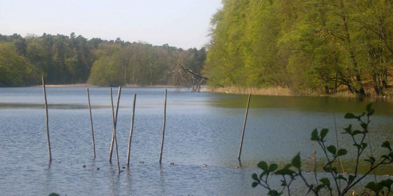 Blick auf den See Nehmitz