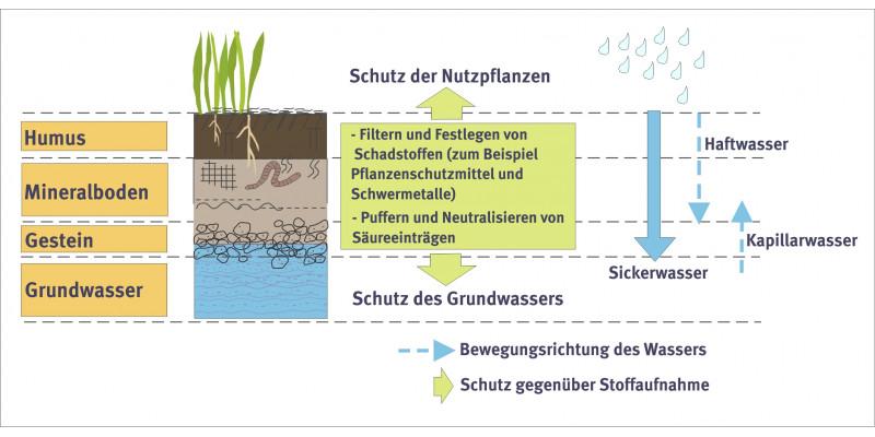 Soil as filter.