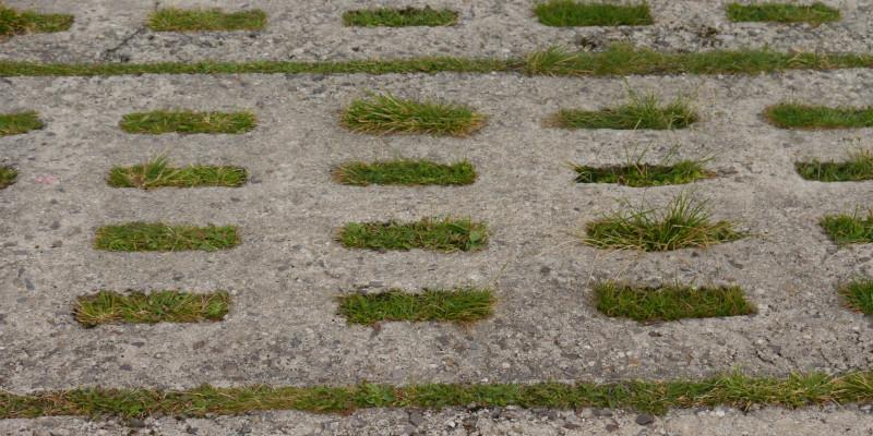 Foto von Betonplatten mit Grasdurchwuchs.