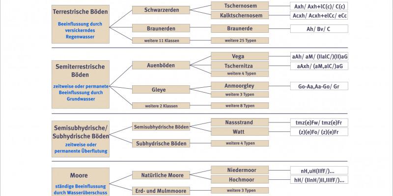 Schema Boden und seine Systematik