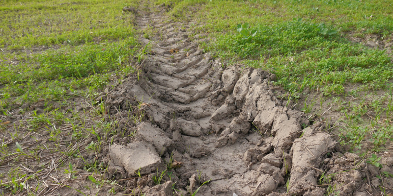 Phot of a deep tyre track on an arable.