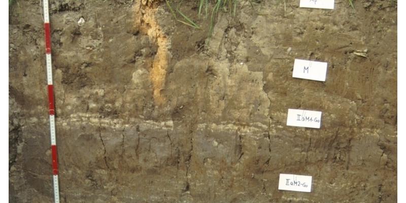 Eine Bodengrube mit unterschiedlich gefärbten Schichten