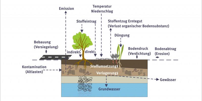 Schaubild zu den Prozessen der Bodenbelastung