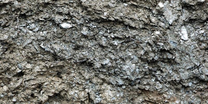 Das Bodenprofil eines Weinbergsbodens aus Tonschiefer.