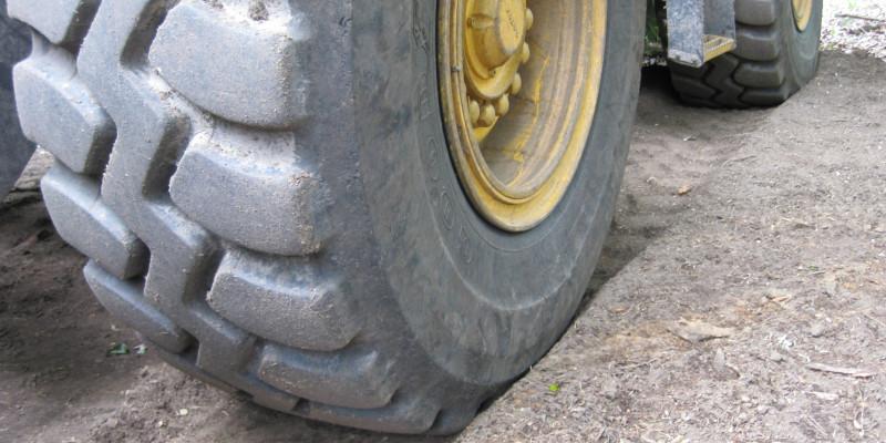 Foto von Reifen im Wald