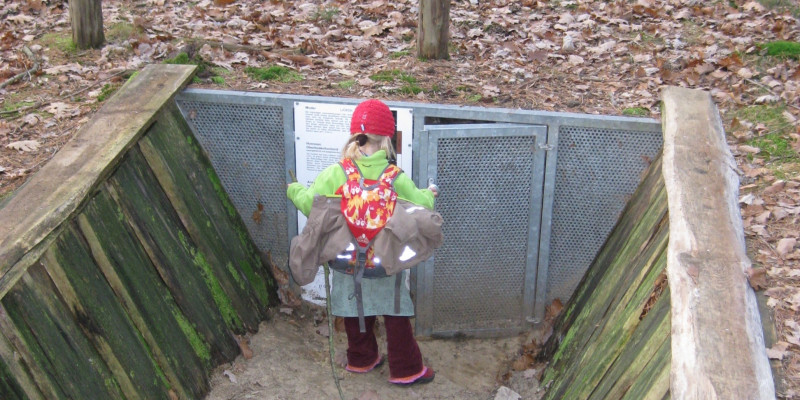 Child in front of a soil profile.
