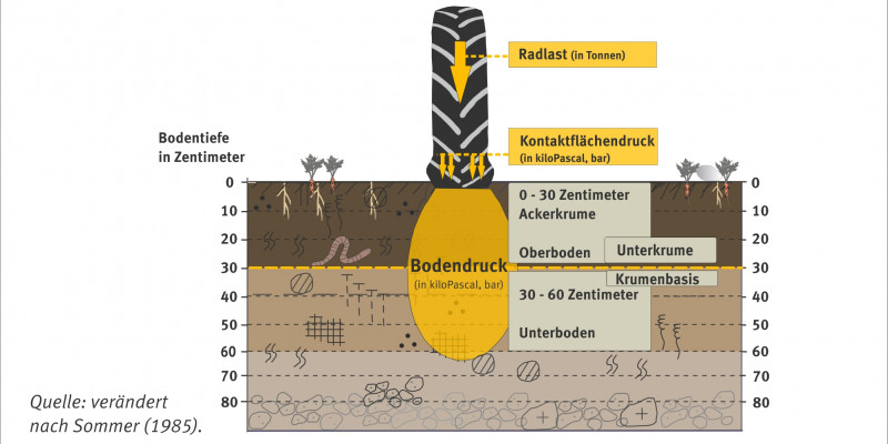Graph showing the causes for soil pressure.