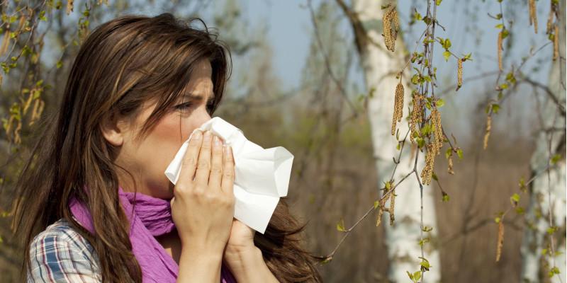 Frau schneuzt sich vor einer blühenden Birke die Nase