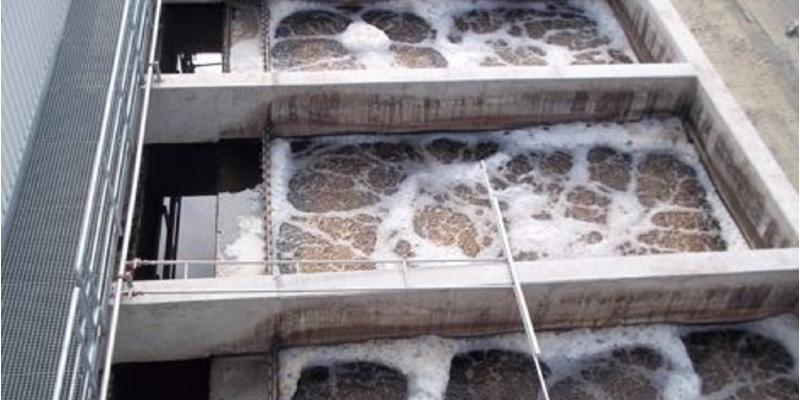 eine Reihe Betonbecken mit schmutzigen, aufgeschäumten Wasser