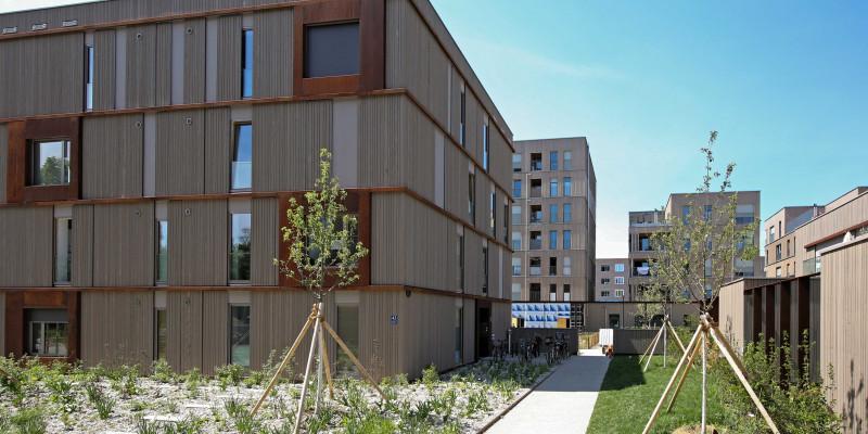 Quartier aus modernen 4-stöckigen Holzbauten