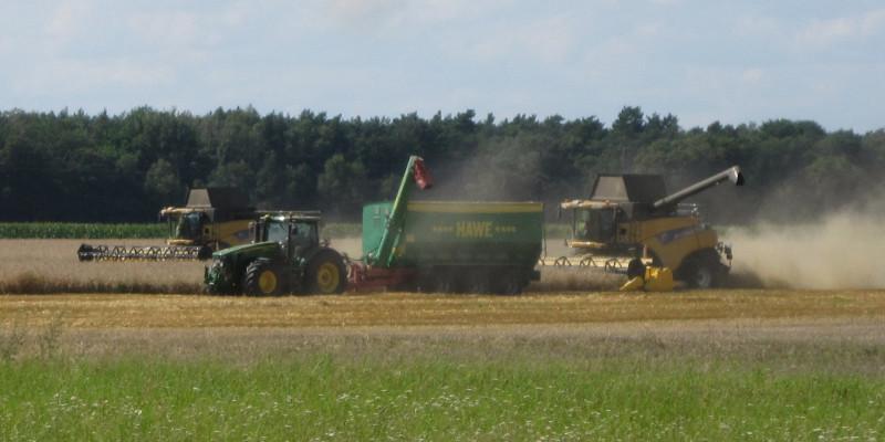 Traktoren bei der Ernte auf einem Feld