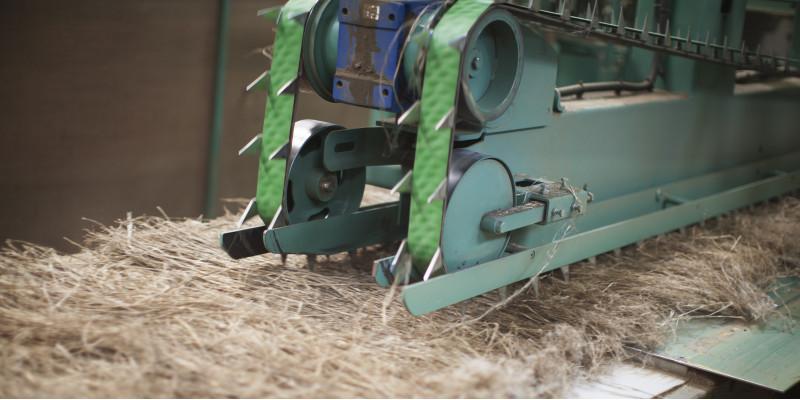 Pflanzenfasern werden von einer Maschine verarbeitet