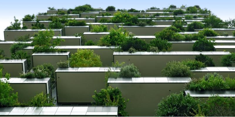 modernes Gebäude mit großen Balkonen mit Büschen und kleinen Bäumen