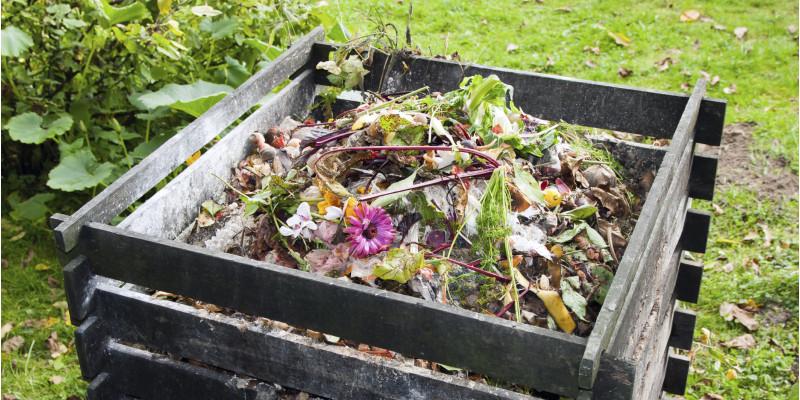 Komposthaufen im Garten mit Umrandung aus Holzbrettern