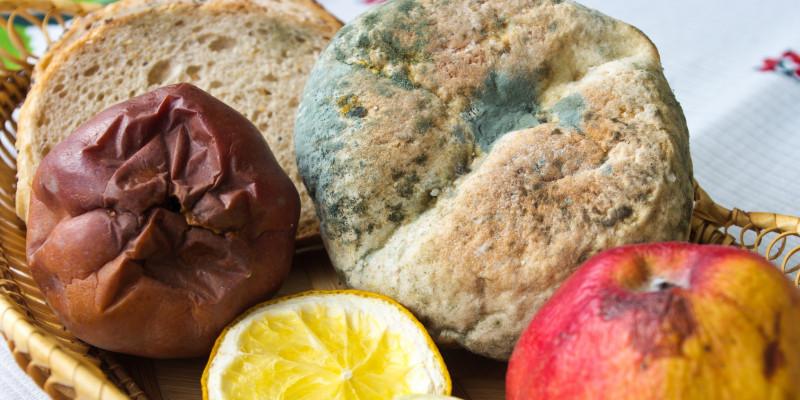 in einem Korb liegen ein verschimmeltes Brötchen, zwei verfaulte Äpfel und eine eingetrocknete Zitrone