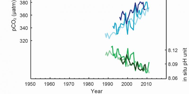 Kurvendiagramm für den Zeitraum 1990 bis 2013, Die atmosphärischen CO2-Konzentrationen steigen, die pH-Werte sinken