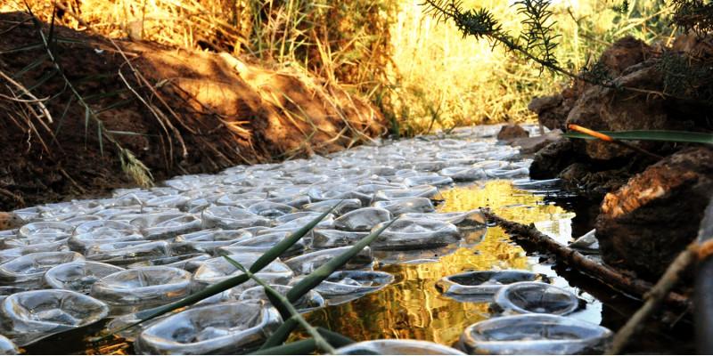 ein Bach gefüllt mit Plastikflaschen als künstlerische Installation
