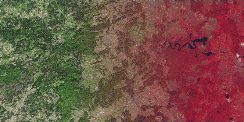 auf einem Luftbild sind Wälder zu sehen, der eine ist grünlich, der andere rötlich eingefärbt