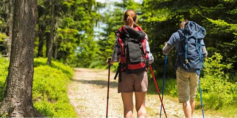 eine Frau und ein Mann beim Wandern mit Wanderrucksäcken und Wanderstöcken auf einem Waldweg