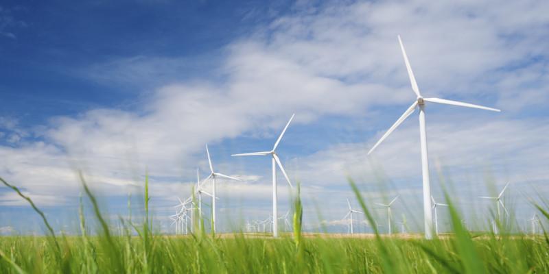 Windkraftanlagen auf einem Feld vor blauem Himmel mit Schönwetterwolken