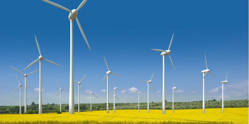wind energy plants on a field