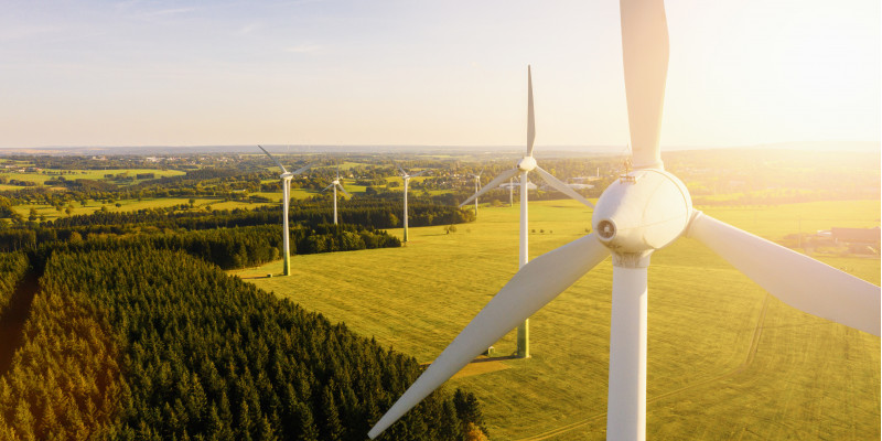 Windpark in einer sonnigen Landschaft