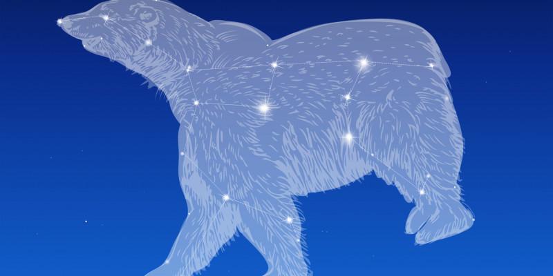 Das Sternbild des großen Bären